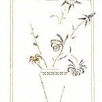 №0057. Цветок в кашпо 150x150 - Альбом №3