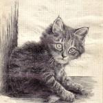 .010 Котёнок Дымок 150x150 - Альбом №2