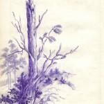 .075. Сломаное дерево 150x150 - Альбом №2