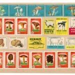 Image163 150x150 - Спичечные этикетки