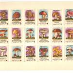 Image333 150x150 - Спичечные этикетки