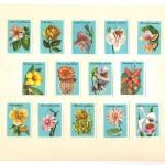 Image334 150x150 - Спичечные этикетки