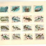 Image343 150x150 - Спичечные этикетки