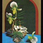 на открытках 0007 150x150 - Орхидеи на открытках