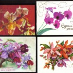 на открытках 0014 150x150 - Орхидеи на открытках