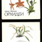 на открытках 0024 150x150 - Орхидеи на открытках
