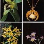 на открытках 0063 150x150 - Орхидеи на открытках
