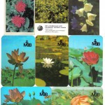 150x150 - Мои календарики