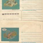 0026 5 0027 5 150x150 - Прочие марки