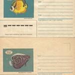 0028 5 0029 5 150x150 - Прочие марки