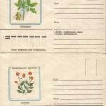 0034 5 0035 5 150x150 - Прочие марки