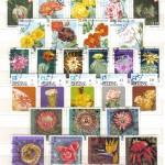 0015 323 150x150 - Флора II