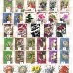 0021 139 150x150 - Флора отечественная