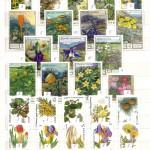 0024 171 150x150 - Флора отечественная