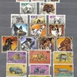 0005 270 150x150 - Фауна I