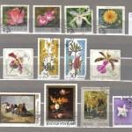 бракованный 1 5 150x150 - Прочие марки