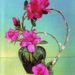 Азалия в вазе 150x150 - Цветы