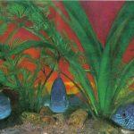 Акара голубая 150x150 - Аквариумные рыбки