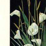 Андросова А. Каллы 150x150 - Цветы