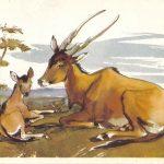 Антилопа с детёнышем  150x150 - Другие животные