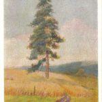 Башинджагян Г.З Сосна 150x150 - Советские художники и зарубежья