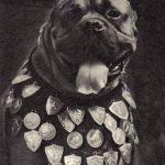 Боксёр 2 150x150 - Собаки чёрно-белые