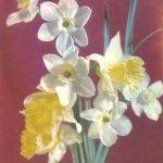 Букетие нарциссов 150x150 - Цветы