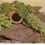 Виноград в декоративной композиции 150x150 - Различные растения