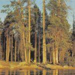 В Карелии 150x150 - Пейзажи