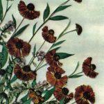 Гаврилова Е. Гелениум 150x150 - Цветы