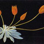 Гаврилова Е. Тюльпаны 150x150 - Цветы