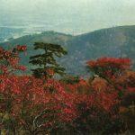 Гора Сяншань в осеннем убранстве 150x150 - Пейзажи