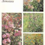 Декоративные растения. Откр. 009 150x150 - Цветы