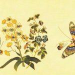 Деталь вышивки на китайской шали 4  150x150 - Бабочки