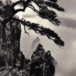 Древнее дерево и удивительные горы 150x150 - Пейзажи
