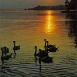 Закат солнца над Боденским озером 150x150 - Пейзажи