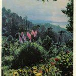Зелёный мыс. Батумский Ботсад 150x150 - Пейзажи