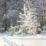 Зима 150x150 - Пейзажи