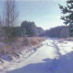 Зимний лес 2 150x150 - Пейзажи