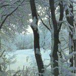 Зимы узоры 150x150 - Пейзажи