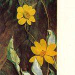 Инчагова А. Георгины 150x150 - Цветы