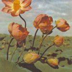Каспийские лотосы 150x150 - Цветы
