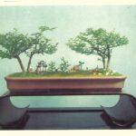 Китайский миниатюрный пейзаж 11 150x150 - Цветы