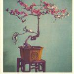 Китайский миниатюрный пейзаж 3 150x150 - Цветы