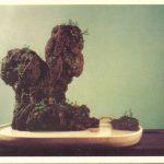 Китайский миниатюрный пейзаж 4 150x150 - Цветы