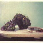 Китайский миниатюрный пейзаж 6 150x150 - Цветы