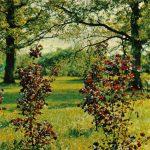Клён остролистный садовая форма Кримсон Кинг 150x150 - Различные растения
