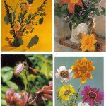 Композиции из цветов № 0057 0060 150x150 - Цветы