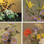 Композиции из цветов № 0073 0076 150x150 - Цветы