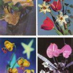 Композиции из цветов № 0097 0100 150x150 - Цветы